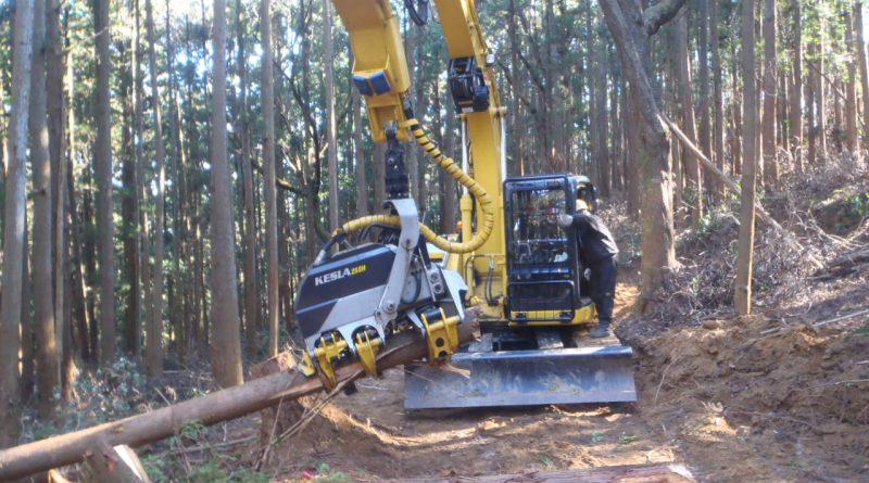 ハーベスターによる造材_つくばね森林組合