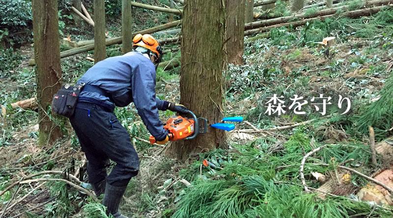 つくばね森林組合-森を守り