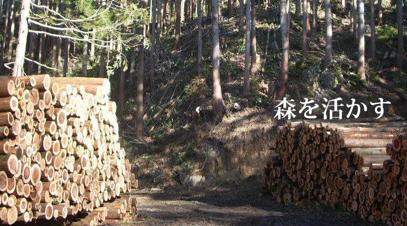 つくばね森林組合-森を活かす